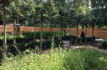 Moscow Summer House Garden
